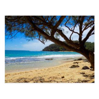 Strand in Kauai Postkarte