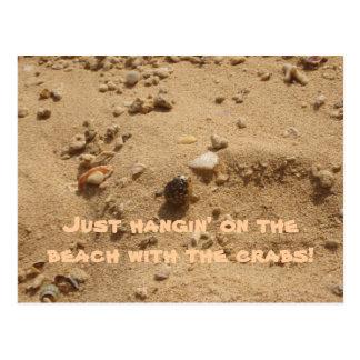 Strand-Krabbe Postkarte