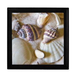 Strand-Muschel-Thema #2 Erinnerungskiste