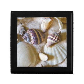 Strand-Muschel-Thema #2 Geschenkbox