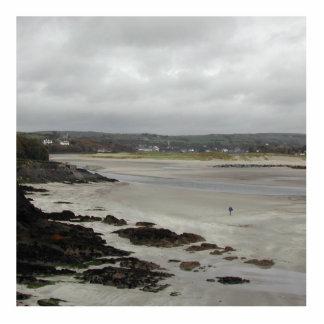 Strand nahe Rosscarbery Bucht, Irland Fotoausschnitt