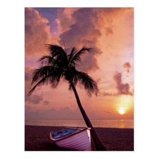 Strand, Ozean, Palme, Boot und Sonnenuntergang Postkarte