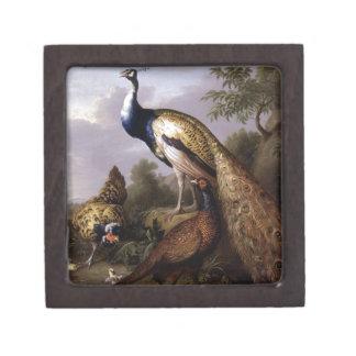 STRANOVER, Tobias-Vogelpfautiere Vintag Schachtel