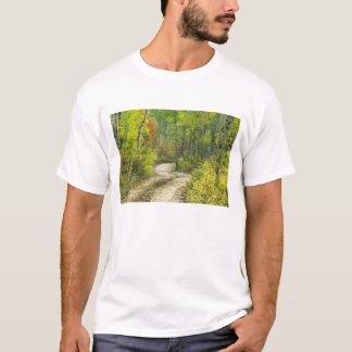Straße mit Herbstfarben und Espen in Kebler T-Shirt