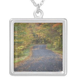 Straßenrand-Herbstlaub, Südvermont, USA Versilberte Kette