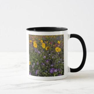 Straßenrand-Wildblumen in Texas, Frühling 2 Tasse