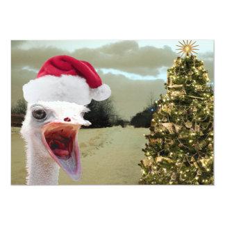 Strauß erhält über Weihnachten aufgeregt Karte