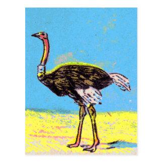 Strauß Postkarte