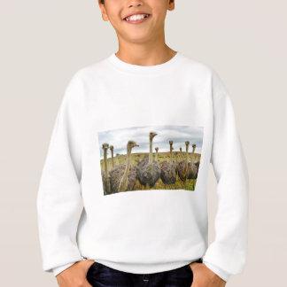 Strauß Sweatshirt