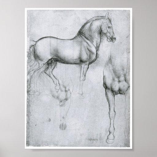 Studie der Pferde, Leonardo da Vinci Plakate