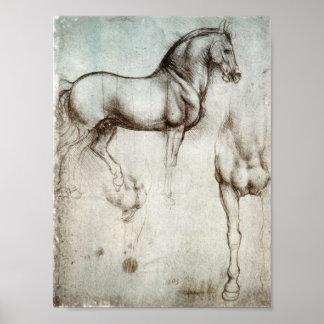 Studie der Pferde Poster