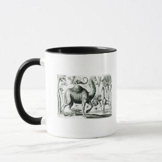 Studie der Tiere und der Blumen, graviert Tasse
