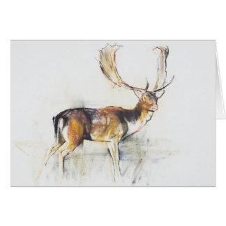 Studie eines Hirsches Grußkarte