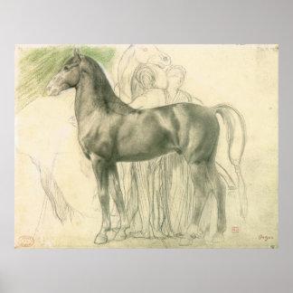 Studie eines Pferds mit Zahlen Poster