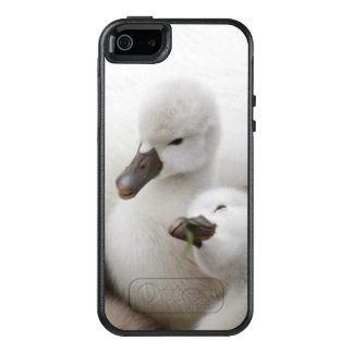 Stummer SchwanCygnets OtterBox iPhone 5/5s/SE Hülle