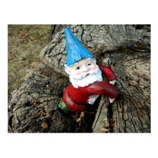 Stumped Gnome Postkarte