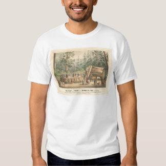 Stumpf des Mammutbaums von Calaveras (0977A) T-Shirts