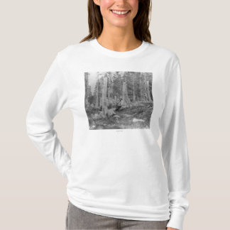 Stümpfe der Bäume verringert von Donner Party T-Shirt