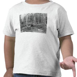 Stümpfe der Bäume verringert von Donner Party Shirt
