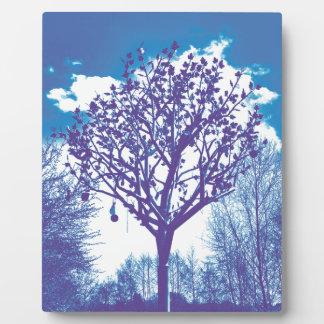 stumpfes Blau des Metallbaums Fotoplatte