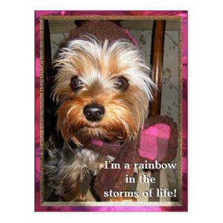 Stürme der Leben-Postkarte Postkarten