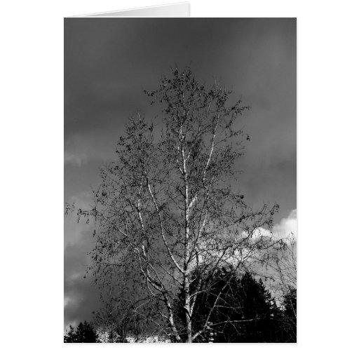 Stürmische Himmel Grußkarten
