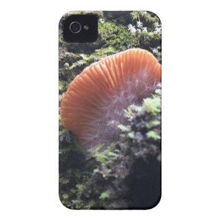 Stürmischer Myzel-Explosions-Pilz iPhone 4 Case-Mate Hüllen