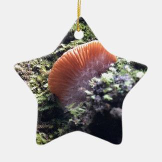 Stürmischer Myzel-Explosions-Pilz Keramik Stern-Ornament