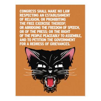 Stützen Sie und verteidigen Sie die Konstitution Postkarte
