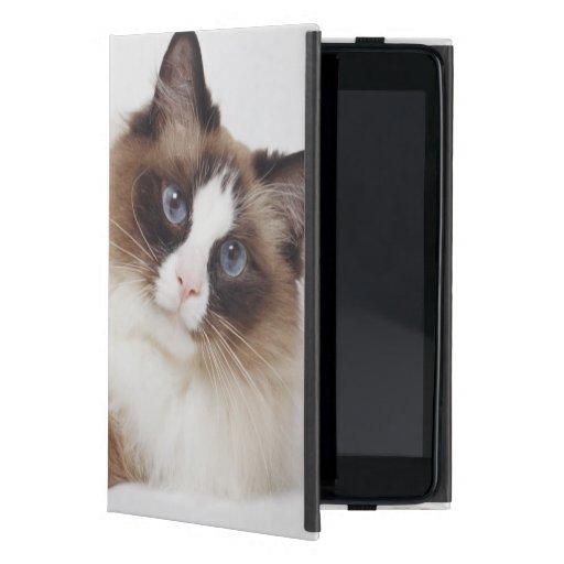 Stützende Katze Hülle Fürs iPad Mini