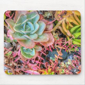 Succulents Mousepad