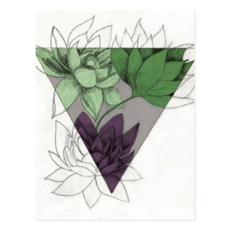 Succulents Postkarte
