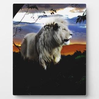 Südafrika-Löwe im Dschungel Fotoplatte