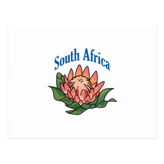 Südafrikanische Blume Postkarte
