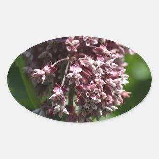 Südlicher Wermut (Wermut abrotanum) Ovaler Aufkleber