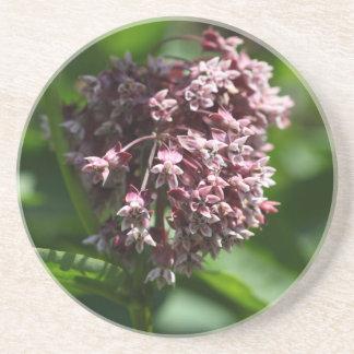 Südlicher Wermut (Wermut abrotanum) Untersetzer