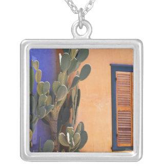 Südwestlicher Kaktus (Opuntie dejecta) und Versilberte Kette