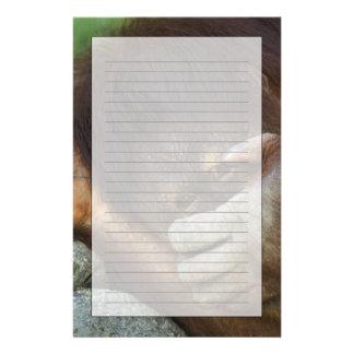 Sumatran Orang-Utan, Pongo pygmaeus Briefpapier