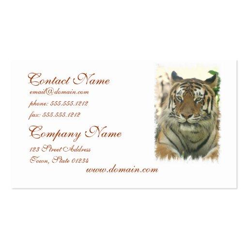 Sumatran Tiger-Visitenkarten