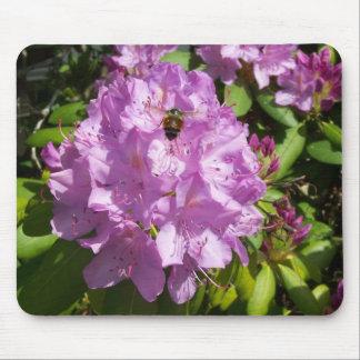 Summen über einem Lavendel-Rhododendron Mousepad