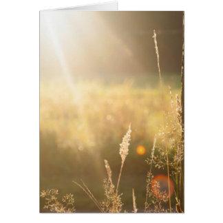 Summerfield Karten