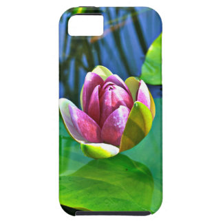 Summery Ode to the Water Lily iPhone 5 Etui