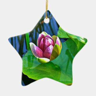 Summery Ode to the Water Lily Keramik Ornament