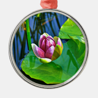 Summery Ode to the Water Lily Rundes Silberfarbenes Ornament
