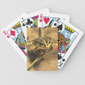 Sumpf-Frosch Bicycle Spielkarten