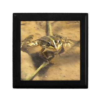 Sumpf-Frosch Erinnerungskiste