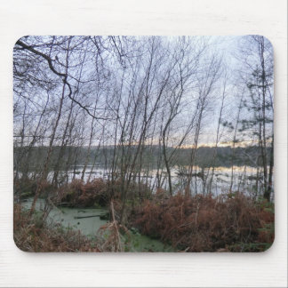 Sumpfgebiete und Blakemere Moos in Delamere Wald Mousepads