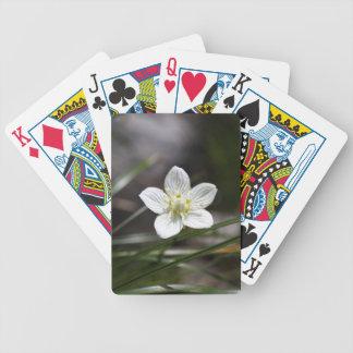 Sumpfgras von Parnassus (Parnassia palustris) Bicycle Spielkarten