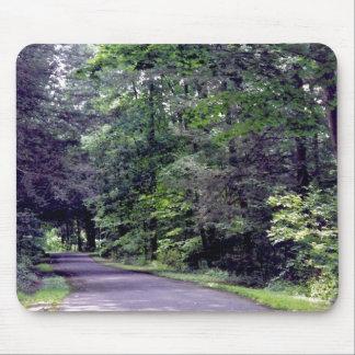 Sun-dappled Wald - mousepad