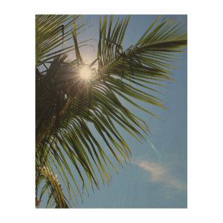 Sun, der durch Palme scheint Holzleinwand